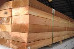 Timber-1-